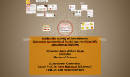 Antibiofilm activity of Java turmeric (Curcuma xanthorrhizol