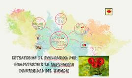 ESTRATEGIAS DE EVALUACION POR COMPETENCIAS EN ENFERMERIA UNI