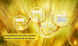 Propiedad privada, bien comun y destino universal de los bienes