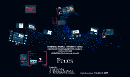 Copy of Peces