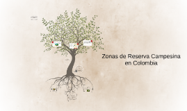 Copy of ZONAS DE RESERVA CAMPESINA EN COLOMBIA