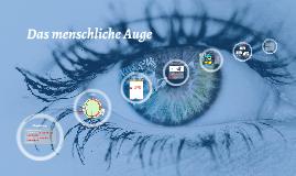 Copy of Das menschliche Auge