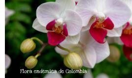 Flora endémica de Colombia