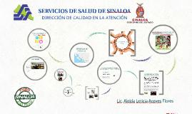 SERVICIOS DE SALUD DE SINALOA