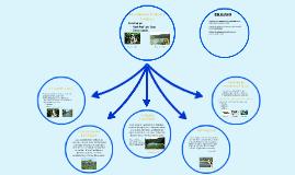 Ecosistemas Loticos y Lenticos
