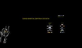 DAVID BAYONA