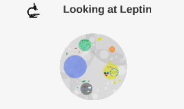 Looking at Leptin