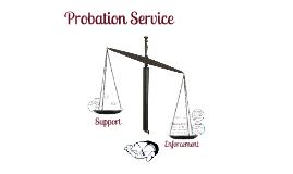 Copy of Probation Practice