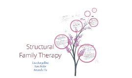 Copy of Structural Family Therapy