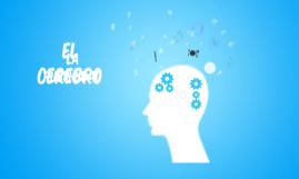El cerebro y publicidad
