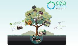 Presentación CEIA 2014-2