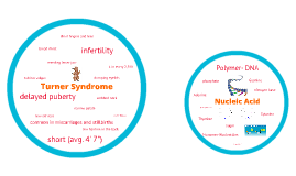 Turner Syndrome and Nucleic Acids