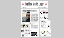 PERFIL PROFESIONAL DE GABRIEL LUQUE
