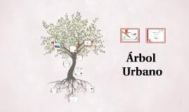 Arbol  Urbano