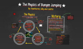 The Physics of Bungee Jumping