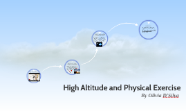High Altitude and Physical Execise