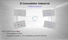 Copy of Comportamiento de Compra Industrial - Joaquin Negri