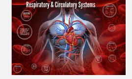 Copy of Respiratory & Circulatory Systems