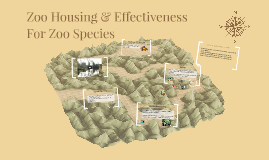 Zoo Housing & Effectiveness For Zoo Species Lesson 5