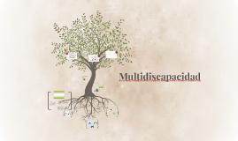 Multidiscapacidad