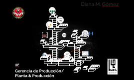 Gerencia de Producción/ Planta & Producción