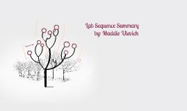 Lab Sequence Summary
