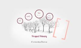 Prospect Primary