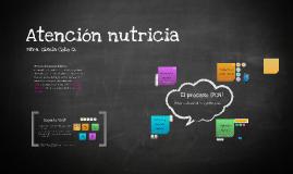 Atención nutricia