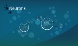 Chapter 3 Neurons
