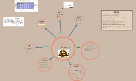 Company Profile Project