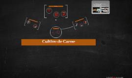 Copy of Carne Cultivada