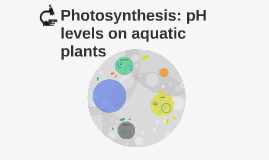 Copy of Photosynthesis: pH levels on aquatic plants