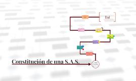 Constitucion S.A.S.