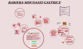 Copy of BARIERA MUCOASEI GASTRICE