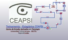 Treinamento de estagiários CEAPSI