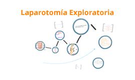 Copy of Laparotomia exploratoria