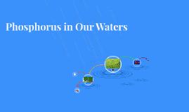 Phosphorus in Our Waters