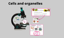 Copy of Cells and Organelles