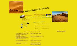 Ecosystem in Sahara desert