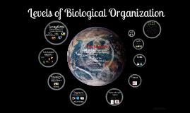 Biological Organization