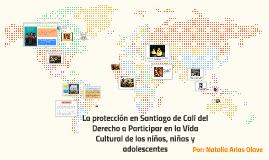 La protección en Santiago de Cali del Derecho a Participar e