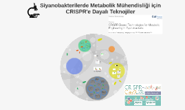 Siyanobakterilerde Metabolik Mühendisliği için CRISPR Dayalı