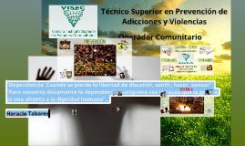 VISEC - Vinculo Instituto Superior de Estudios Comunitarios