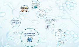 Grado de contaminación bacteriana de los Dispositivos móviles de los estudiantes de la Escuela Normal Dr. Juan Pujol- Ciclo Orientado