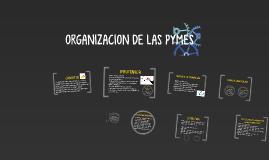ORGANIZACION DE LAS PYMES