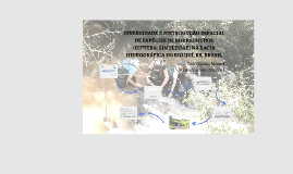 Copy of Apresentação TCC TIELI