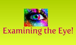 Examining the Eye