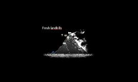Welcome! To  The Fresh Kills Landfills