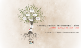 Attorney Stories of Environmental Crime