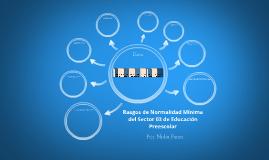 Rasgos de Normalidad minima del Sector 03 de Educacion Prees